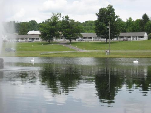 Fountain View Motel - Accommodation - Richfield Springs