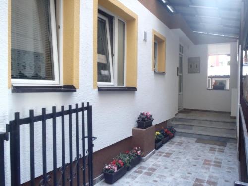 Belkoski Apartments