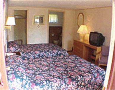Happy Bear Motel - Accommodation - Killington