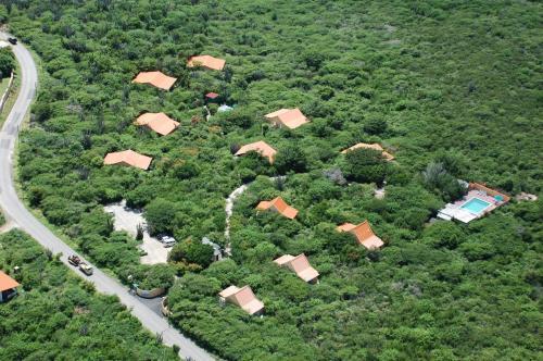 . Flamingo Park Curacao