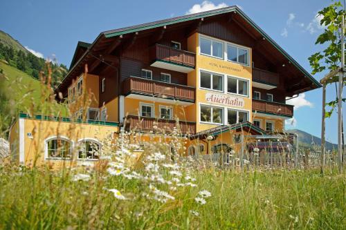 Hotel & Appartement Auerhahn Obertauern