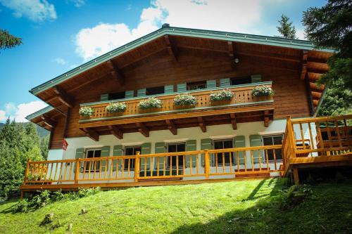 Apartment Strims - Accommodation - Zauchensee