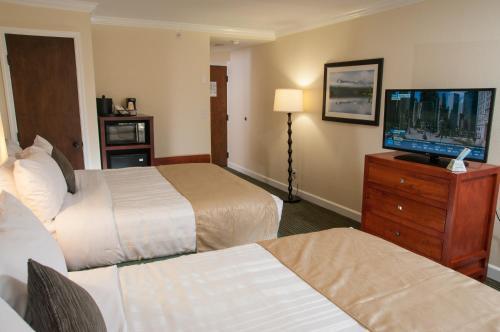 Room #40731524