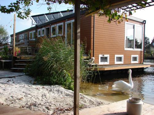 B&B Houseboat between Amsterdam Windmills