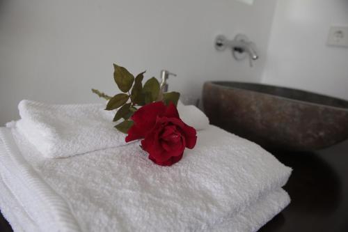 Doppelzimmer Arriadh Hotel 56