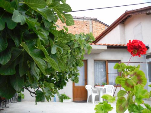 Quarto Duplo com Varanda e Vista Jardim (Double Room with Balcony and Garden View)