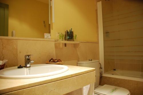 Single Room Hotel Leonor de Aquitania 14