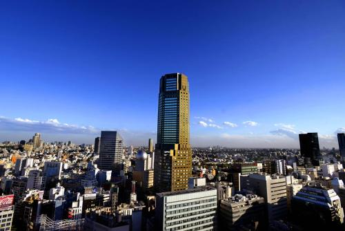 Cerulean Tower Tokyu Hotel photo 15