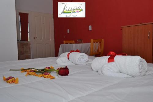 Фото отеля Irupe