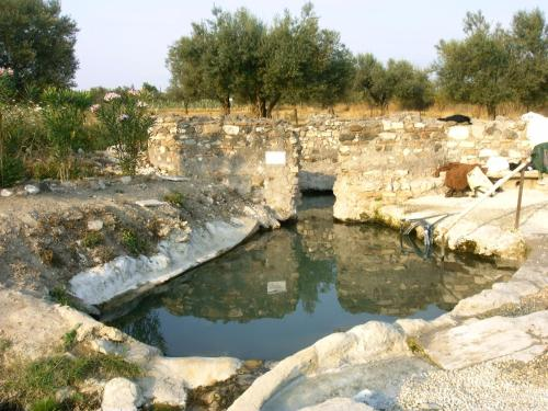 Forum Cassii