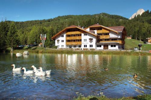 Wellness Hotel Lupo Bianco Canazei