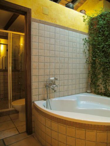 Suite El Jardín Vertical 5