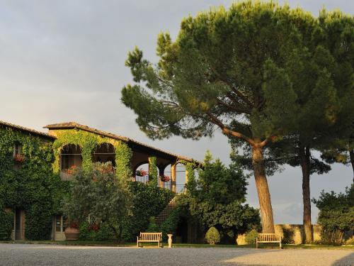 Località S. Felice, Castelnuovo Berardenga dell'Abate, Chianti, Tuscany, Italy.