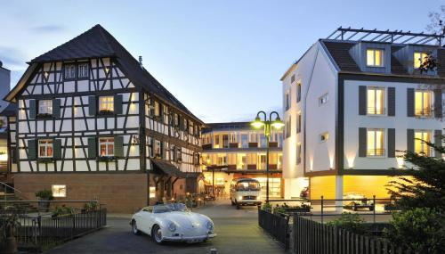 Hotel-overnachting met je hond in Hotel Ritter Durbach - Durbach