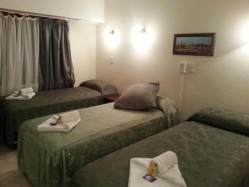 Фото отеля San Remo Viking Hotel
