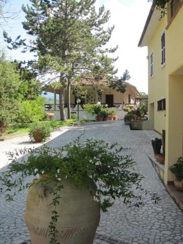 Valle degli Ulivi.  Foto 1