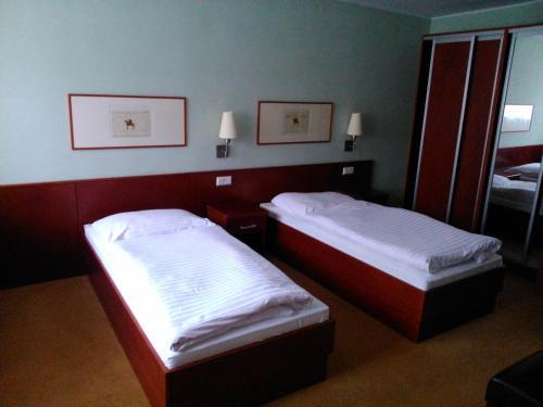 Hotel-overnachting met je hond in Hotel Refleks - Toru?