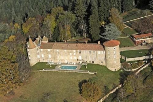 Kasteel-overnachting met je hond in Château De Vollore - Vollore-Ville