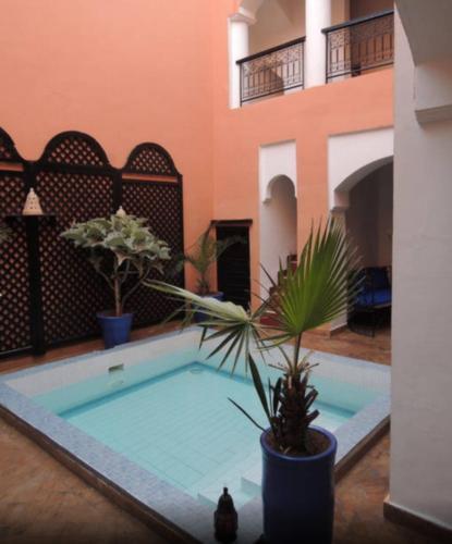 Фото отеля Dar Lilas