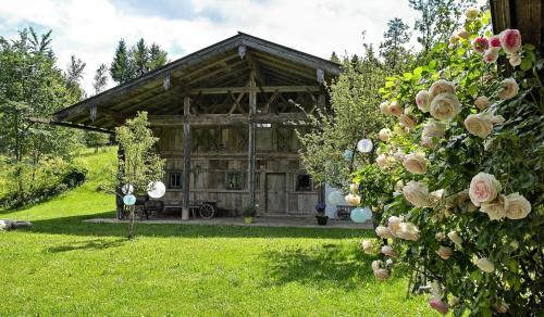 . Steinbachhof Chiemsee