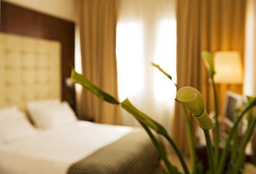 Hotel Palace Bonvecchiati Представительский двухместный номер с 1 кроватью или 2 отдельными кроватями