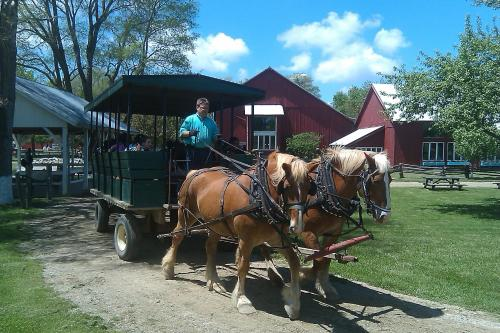 Inn At Amish Acres - Nappanee, IN 46550