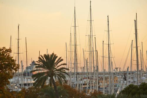 Apuntadores 38, 07012 Palma, Majorca, Balearic Islands, Spain.