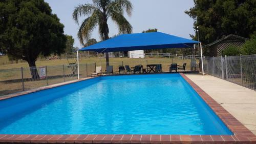 . Jacaranda Motor Lodge