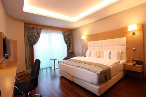 תמונות לחדר Holiday Inn Ankara - Cukurambar