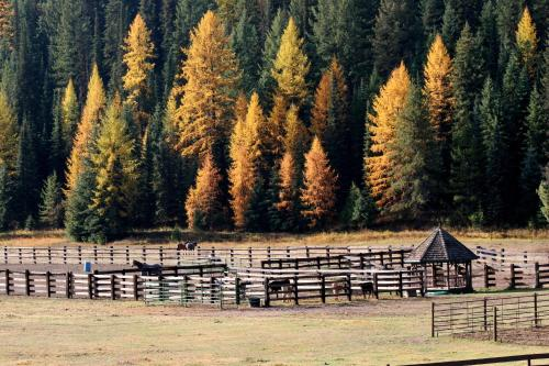 Bar W Guest Ranch - Whitefish, MT 59937