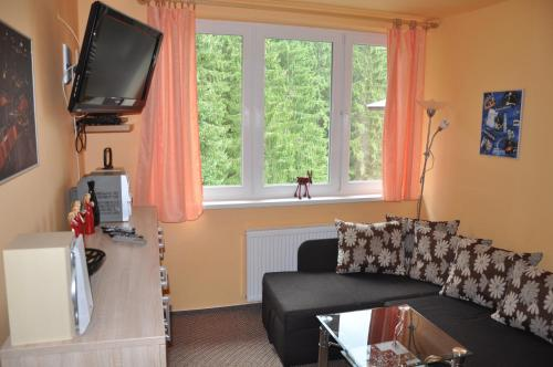 Jasna 96 - Apartment - Demänovská Dolina