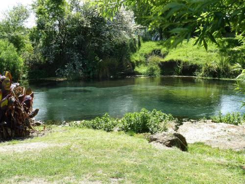 . Spring Creek Holiday Park