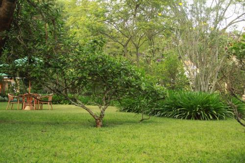 Masai Lane, off Bogani Rd, PO Box 25035-00603 Karen, Nairobi, Kenya.