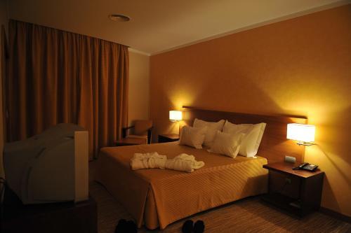 صور غرفة Hotel Lusitania Congress & Spa