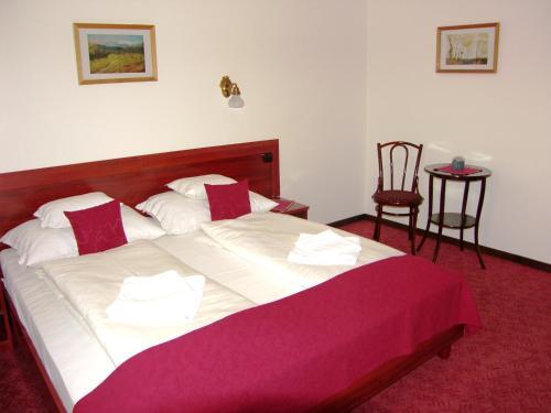 Adler Hotel room photos