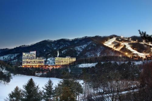 Hanwha Resort Pyeongchang - Accommodation