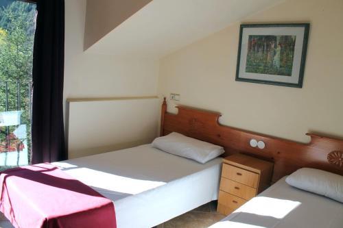 Фото отеля Apartamentos Anem 3000
