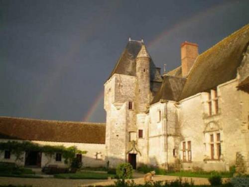 Kasteel-overnachting met je hond in Chateau de Chémery - Chémery
