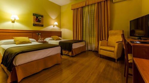 Hotel Zodiaco room photos