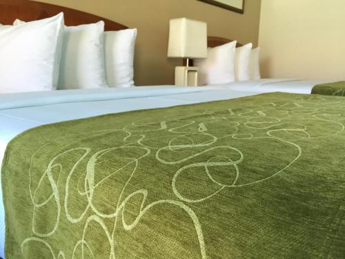 Seasons Florida Resort - Kissimmee, FL 34746