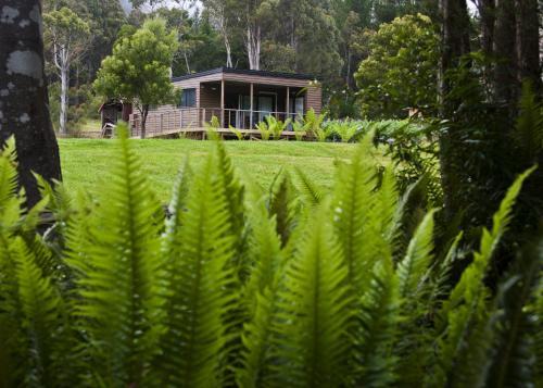 Tyenna River Cottages - Accommodation - Tyenna