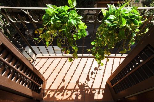 Always Barcelona Apartments - Montjuic photo 15
