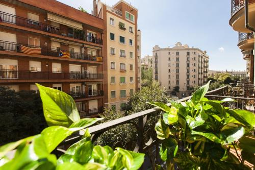 Always Barcelona Apartments - Montjuic photo 16