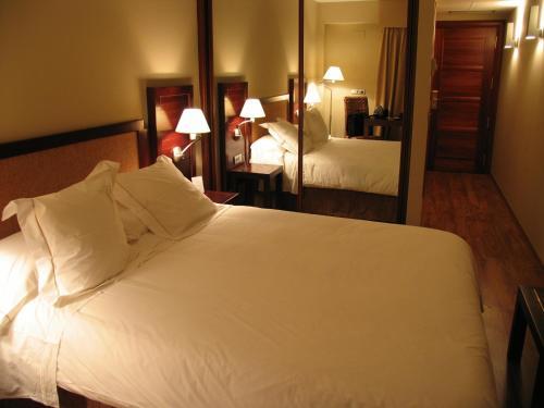 Habitación Doble - 1 o 2 camas Hotel Boutique & Spa El Privilegio 11