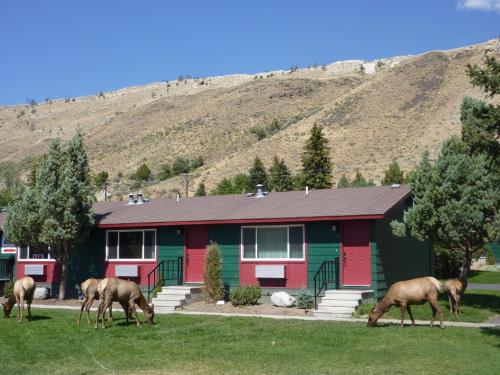 Yellowstone Gateway Inn - Gardiner, MT 59030