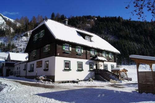 Der Perweinhof - Apartment - Donnersbachwald
