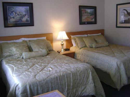 תמונות לחדר Grace Inn
