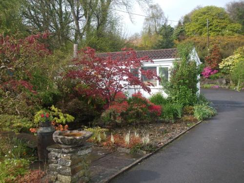 Cwmbach Guest House picture 1 of 30