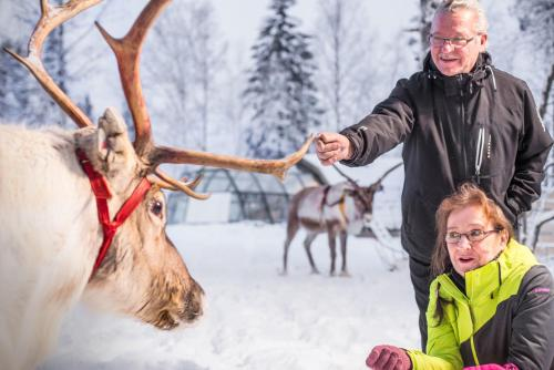 Lapland Igloo, Lapland