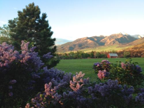Pine Creek Cabin Livingston Montana - Livingston, MT 59047